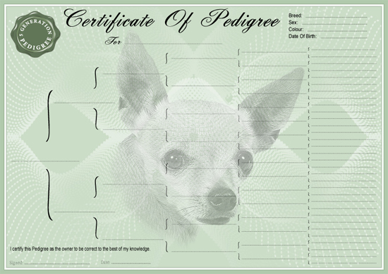 Chihuahua Smooth Coated Pedigree Certificate