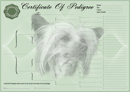 Chinese Crested Pedigree Certificate