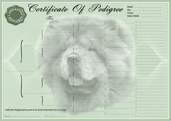 Chow Chow Pedigree Certificate