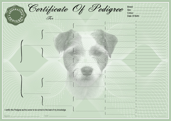 Parson Russell Terrier Pedigree Certificate