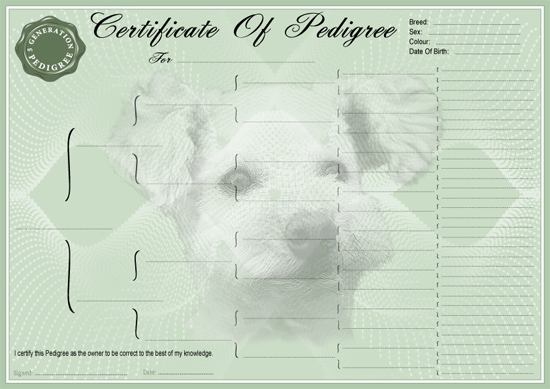 Toy Poodle Pedigree Certificate