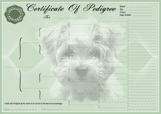 West Highland Terrier Pedigree Certificate