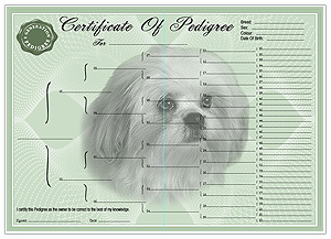 Shih Tzu Pedigree Certificates