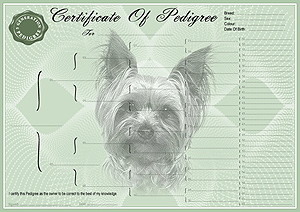 Yorkshire Terrier Pedigree Certificates