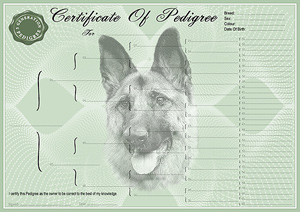 German Shepherd Pedigree Certificates