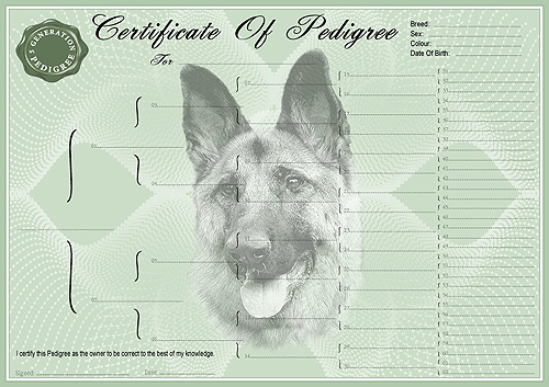 German Shepherd Pedigree Dog Certificate