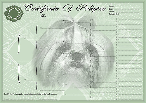 Lhasa Apso Personalised Pedigree Dog Certificate