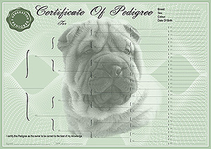 Shar-Pei Pedigree Certificates