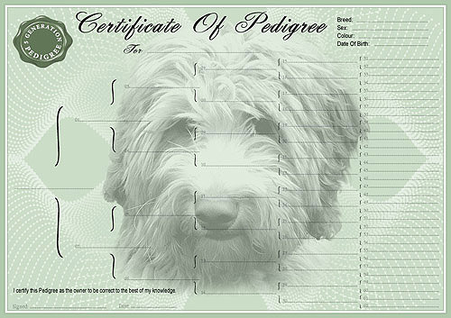 Pug Pedigree Certificates