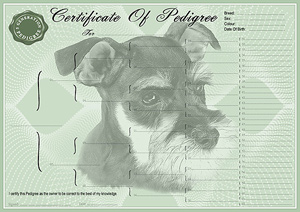 Miniature Schnauzer Pedigree Certificates