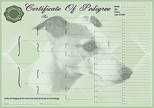 Whippet Pedigree Certificates