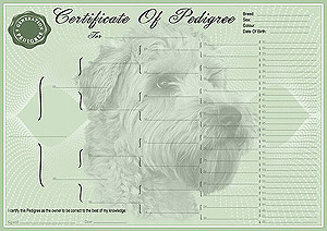 Soft Coated Wheaten Terrier Pedigree Certificates
