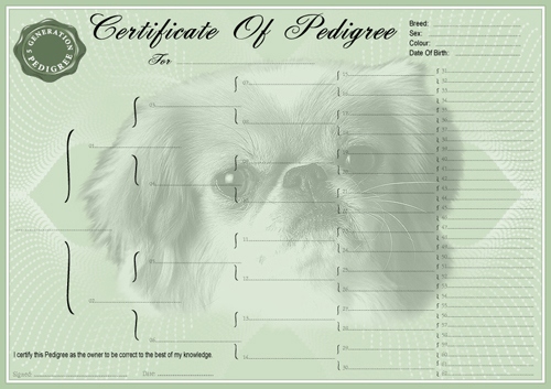 Pekingese Pedigree Certificates