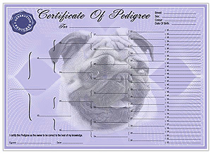 Personalised Pedigree Dog Certificate