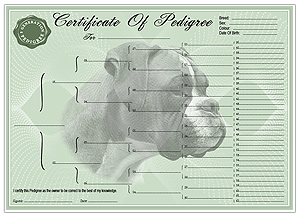 Boxer Pedigree Certificates