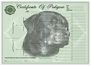 Rottweiler Pedigree Certificates