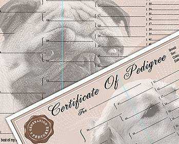 Personalised Pedigree Certificate Forms and Pedigree Forms