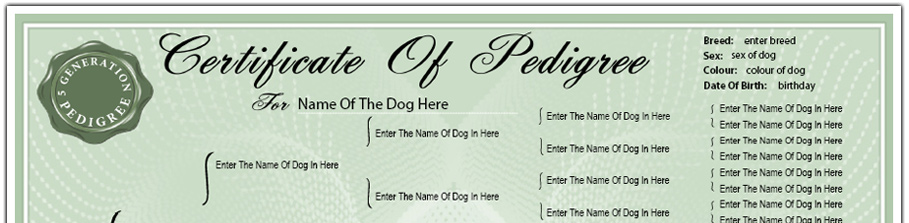 Pedigree Dog Certificate