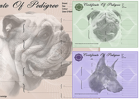 Pedigree Forms and Pedigree Certifcates